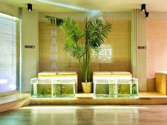 Athens Fish Spa